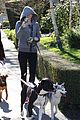 miley cyrus dog walk monday 10