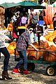 mason cook pumpkin picker 11