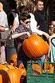 mason cook pumpkin picker 19