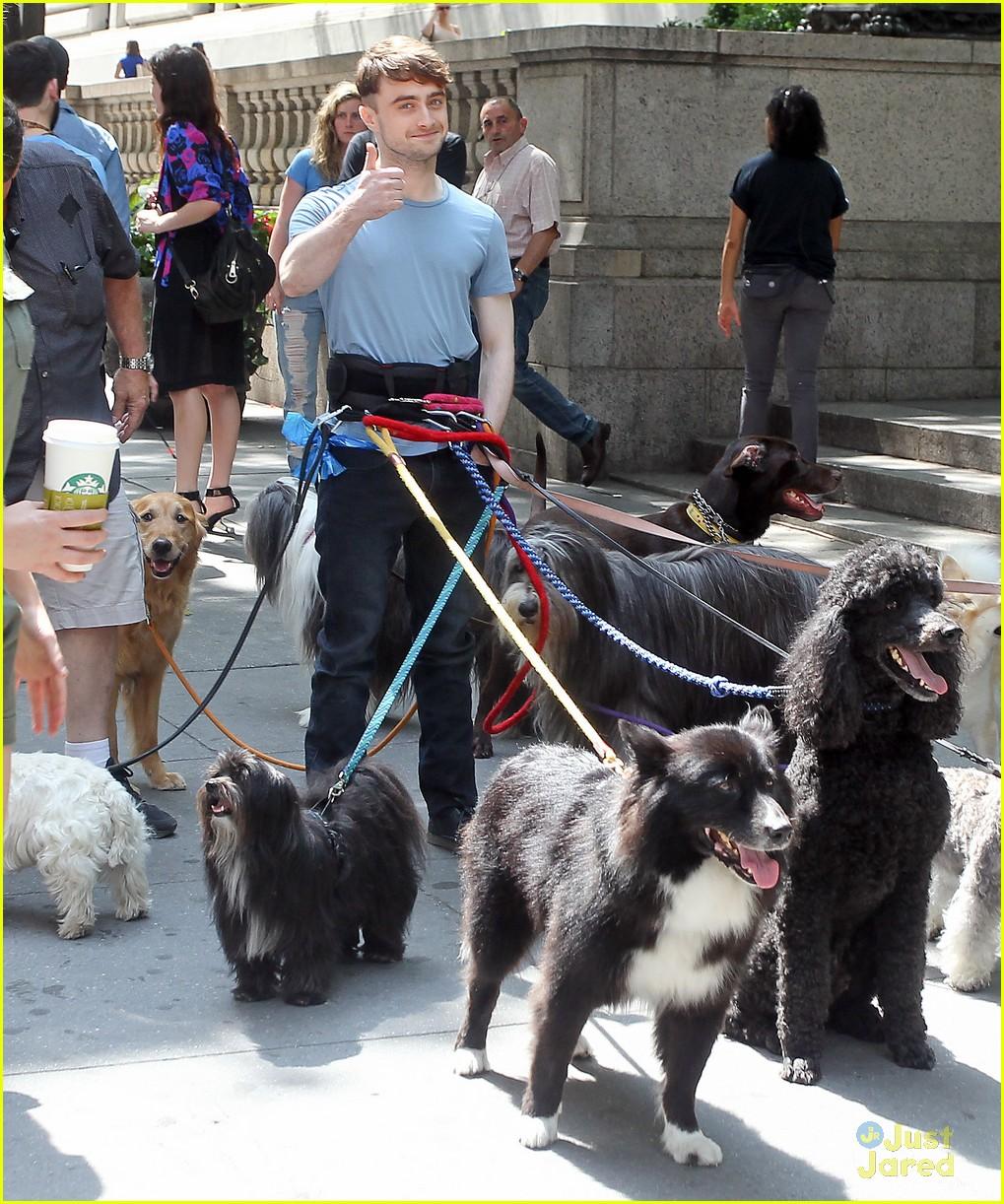 daniel radcliffe dog walker trainwreck nyc set 07 full sized photo of daniel radcliffe dog walker trainwreck nyc set