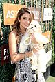 nikki reed designs dog collar leash to benefit aspca 06