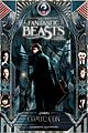 fantastic beasts comic con poster debuts 01