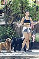 danielle campbell hike with her dogs 14