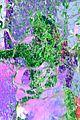 jojo siwa slime kcas performance pics 01