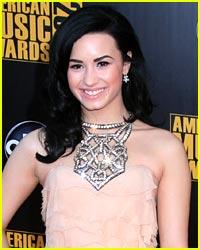 Demi Lovato's Christmas List