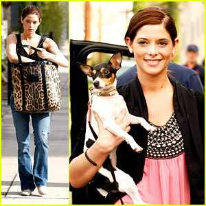 Ashley Greene is Wii Fit Wonderful