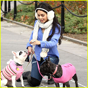 Vanessa Hudgens: Dog Walking In The City
