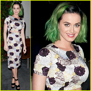 Katy Perry Dresses Up Her New Green Hair at Congressional Event!