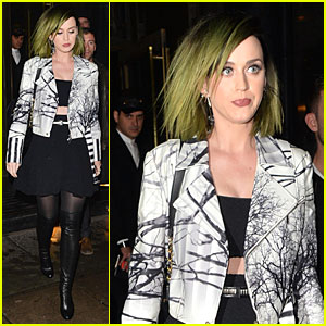 Katy Perry Rang Mom Mary at Concert on Mother's Day!