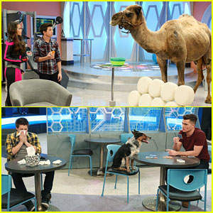 Get An Exclusive Look At This Week's 'Lab Rats: Bionic Island' & 'Mighty Med'!