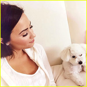 Demi Lovato's Dog Buddy Has Died
