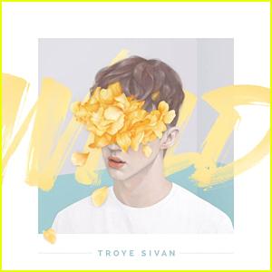 Troye Sivan Debuts 'Wild' Music Video - Watch Here!