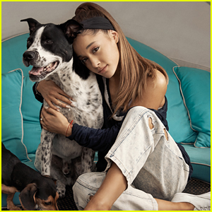 Ariana Grande Wants To Rescue All The Homeless Dogs Everywhere