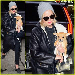 Jennifer Lawrence Bundles Up With Dog Pippi in New York