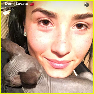 Demi Lovato Is Allergic to Her New Hairless Cat!