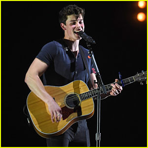 Shawn Mendes Says No One Can 'Fathom' The Success of 'Stitches'