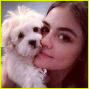Lucy Hale Just Got an Adorable New Puppy!
