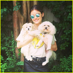 Lucy Hale Takes Family Photo with Her Sons (Her Dogs!)