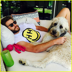 Miley Cyrus Posts Cute Photo of Liam Hemsworth on Instagram!