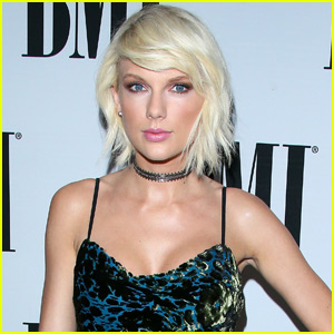 Taylor Swift Won't Have an Album Come Out This Fall