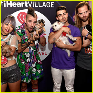 Joe Jonas & DNCE Pose With Puppies at iHeartRadio's Daytime Village in Las Vegas