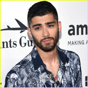 Zayn Malik Is Producing a New Show About a Boy Band!