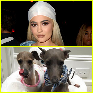 Kylie Jenner Had to Skip AMAs 2016 Because Her Dog Was in Labor!