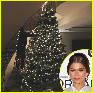 Zendaya Shows Off Her Epic Christmas Tree in Her New House!
