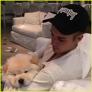 Justin Bieber's Dog Todd Needs Life-Saving Surgery!
