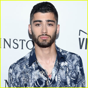 Someone Once Told Zayn Malik To Quit Music