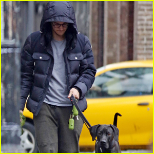Chris Wood Walks Melissa Benoist's Dog