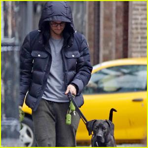 Chris Wood Walks Melissa Benoist's Dog