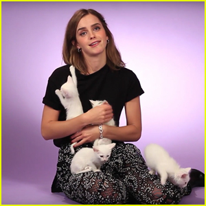 Emma Watson Is All Of Us While Playing With Cute Kittens (Video)
