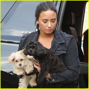 Demi Lovato Brings an Armful of Puppies to the Studio!