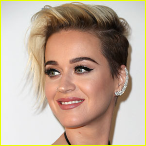 Katy Perry Just Shaved Her Hair ALL Off & Bleached it Platinum -- Pic Inside