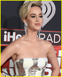 Katy Perry Debuts Racy Music Video for 'Bon Appetit'