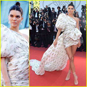 Kendall Jenner Steals the Show on Cannes Red Carpet