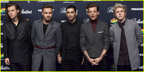 Liam Payne Doesn't Want You To Get Your Hopes Up About a One Direction Reunion With Zayn Malik
