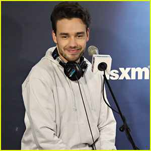 Liam Payne Explains That One Direction Lyric in New Single 'Strip That Down'