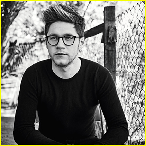 Niall Horan Had a Grand Adventure in Southeast Asia After One Direction's Hiatus Started