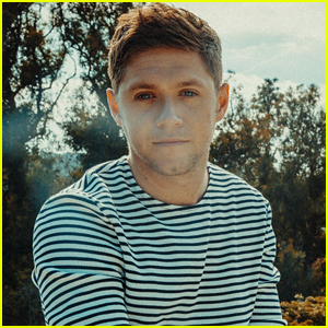 Niall Horan Knew He Was Meant To Be a Singer After Starring in This Musical