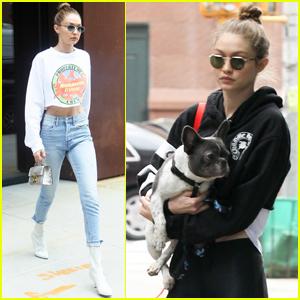 Gigi Hadid Is Taking Good Care of Zayn Malik's Pup!