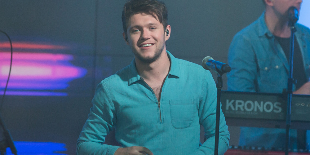 Niall Horan Calls Katy Perry 'Hilarious' After Her ...