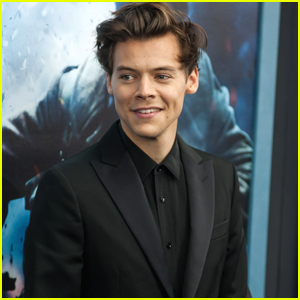 Harry Styles Defends His Fans at 'Dunkirk' Premiere: 'They're the Best People in the World'