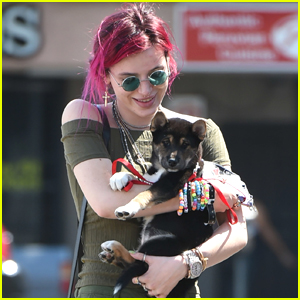 Bella Thorne Brings Blackbear's Dog Pocky Out To Lunch With Her in Los Angeles