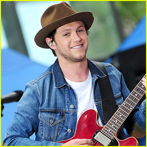 Niall Horan Admits He Gets Homesick For Ireland While On The Road