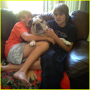 Dylan Sprouse Says Goodbye To Family Bulldog Bubba in Touching Instagram