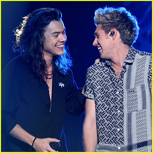 Niall Horan Supported Harry Styles At His L.A. Concert This Week