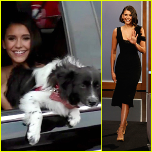 Nina Dobrev's Dog Maverick Wanted To Be On 'Jimmy Kimmel Live' With Her