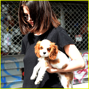 Selena Gomez Hits the Town With Her Adorable New Pup Charles!
